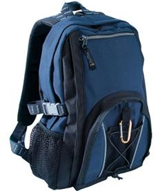 Daypack Silverline