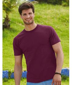 FRUIT Super Premium t-shirt
